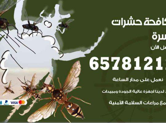 شركات مكافحة حشرات السرة